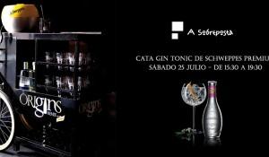 Cata Gin Tonic de Schweppes Premium