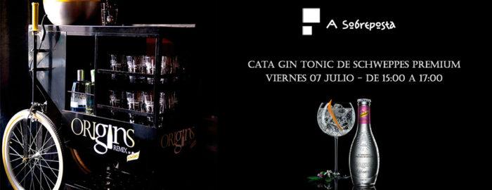 Cata Gin Tonic Schweppes Premium